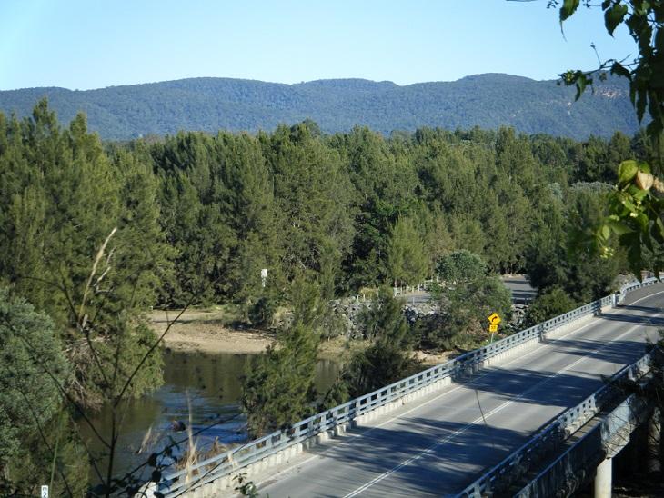 Road, Freeway, Plant, Tree, Highway, Fir, Slope, Outdoors, Conifer, Vegetation